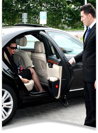 özel makam şoförü