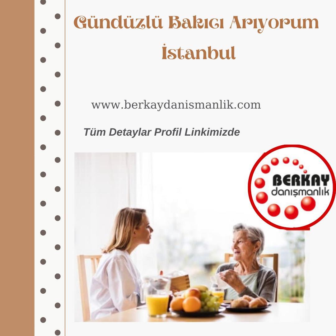 Gündüzlü bakıcı arıyorum İstanbul